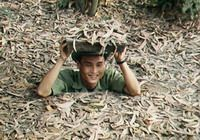 TOURS IN VIETNAM: Half Day Cu Chi Tunnels