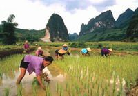 TOURS IN VIETNAM: Vietnam Essential Highlight