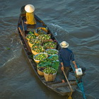 Floating market, Mekong river